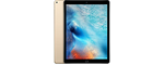 Apple iPad Pro 12.9 Wi-Fi+4G 256Go